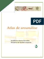 Atlas de Urinálise