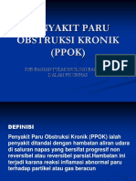 (PPOK) 2