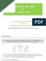 metilacionIslasCpG.pdf
