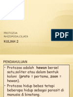 Kuliah 2. Parasitologi Ump Rhizopoda Ciliata