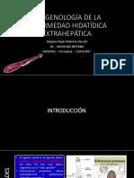 Imagenología - Hidatidosis extrapulmonar