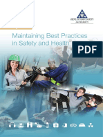 PDF HSA Ireland Best Practices in Safety Guide
