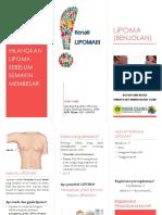 LIPOMA 1