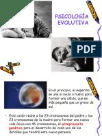Psicologia Del Desarrollo Maestro de Clases2