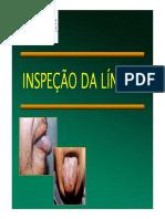 lingua.pdf