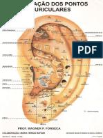 Mapa de auriculo terapia.pdf