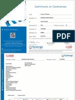 04. Primavera Certificate