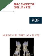 Miembro Inferior - Pie. Parte i. Huesos -b y n