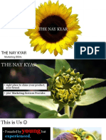 The Nay Kyar Profile
