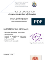 Metodos de Diagnostico C. diphteriae