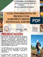 Diapositiva Del Gob Regional