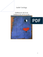 sublim.pdf