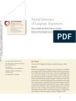 Neural Substrates of Language Acquisition