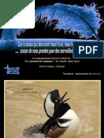 PPS Le carnaval des oiseaux.pps