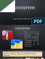 urocultivo EXPO.pptx