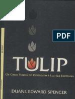 TULIP.pdf