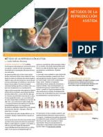 Métodos de la reproducción asistida o artificial