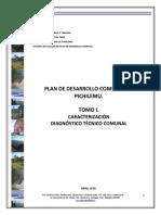 pladeco_tomoI.pdf