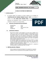 56029822-TEXTO.doc