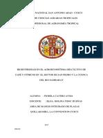 AGROECOSISTEMA.pdf
