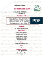 Pre Informe2unidad . (1)