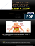 Diapositivas de Morfofisiologia Grupo 5