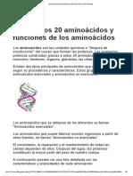 Lista de Aminoácidos y Sus Funciones