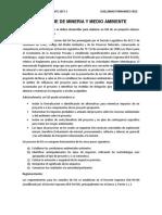 8 Informe de Mineria y Medio Ambiente Guillermo
