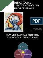 Anna Lucia Campos Cerebro Social