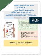 Investigacion Sistema Endocrino