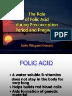 The Role of Folic Acid