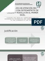 GPC OSTEOARTRITIS completa