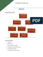 Barilla SPA_Report.docx