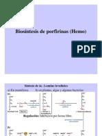 Biosintesis_de_Hemo
