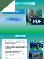 politicasmedioambientales-120728230846-phpapp02 (1).pptx