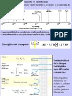 Clase14 Transporte en Membranas A