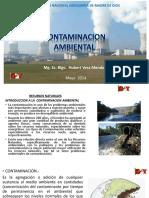 2.- Introduccion a La Contaminacion Ambiental