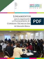 Lineamientos-CTE-2016-17 (1).pdf