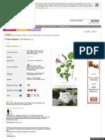 Www Pfaf Org User Plant Aspx LatinName Datura Metel