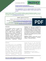 conservacion y magnetismo.pdf
