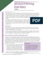 TBI Depression Clinical Summary