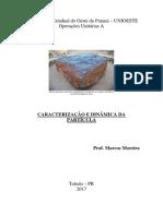 Caracterização Da Partícula