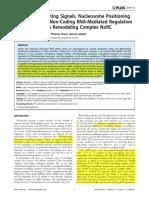 rRNK Gene Silencing - Epigenetics