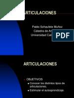 ARTICULACIONES2