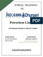 Report Pranjal