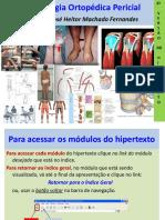 Marcha - ufrg.pdf