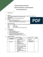 LAPORAN MINILOK BULANAN 2016.docx