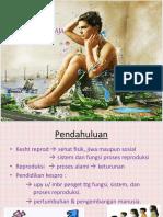 Kesehatan Reproduksi Remaja 1