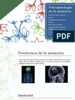 Psicopatología-de-la-memoria