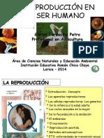 La reproducción del ser humano-GTP2.pptx